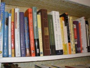 donna books 2